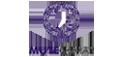 mute-sosyalmedya-eticaret-kurumsal-web-sitesi
